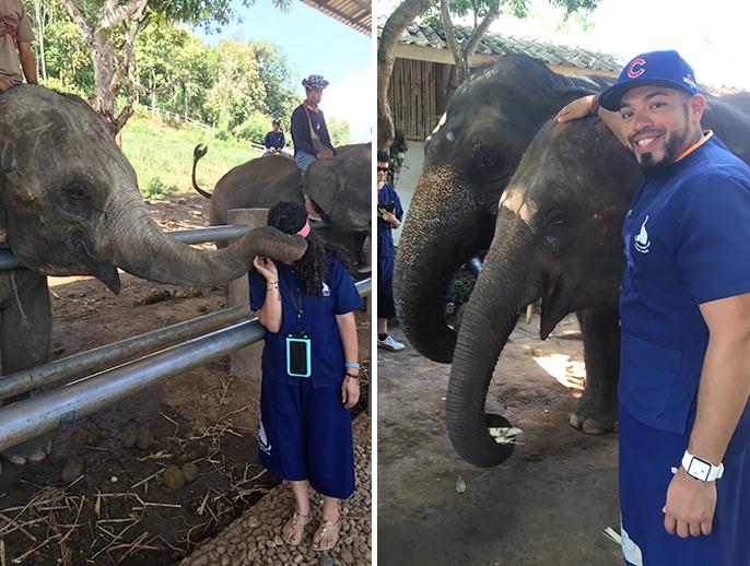 Kick Ass Khao Soi Curry Soup-elephantpark_j-j