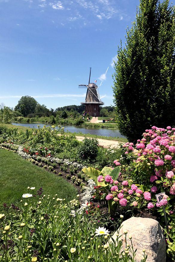 main-image-food-trip-holland